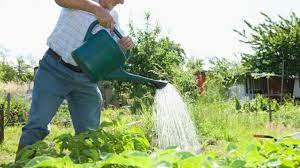 Apa, o resursă de care trebuie să avem grijă toți